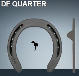 H- DF QUARTER 25X8   2/P  5   ANTERIEUR