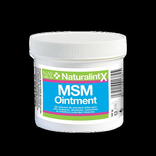 NAF - NaturalintX MSM Ointment