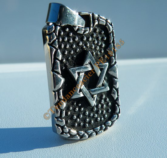 Pendentif Plaque Pur Acier Inoxydable Etoile de David Croix Juive 6 Branches Argenté Israel