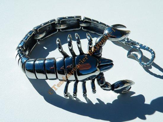 Bracelet Collector Rare 23 cm Pur Acier Inoxydable Argent et Noir Véritable Scorpion
