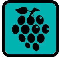 fruitigwit_druiven.jpg