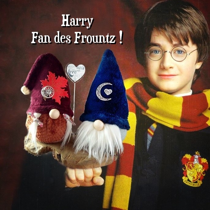 Harry-Potter-Hedwig.jpg