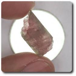 9.96 carats CRISTAL DE TOURMALINE Mozambique, Afrique