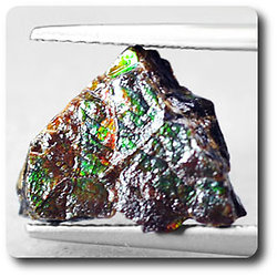 3.26 carats AMMOLITE Canada