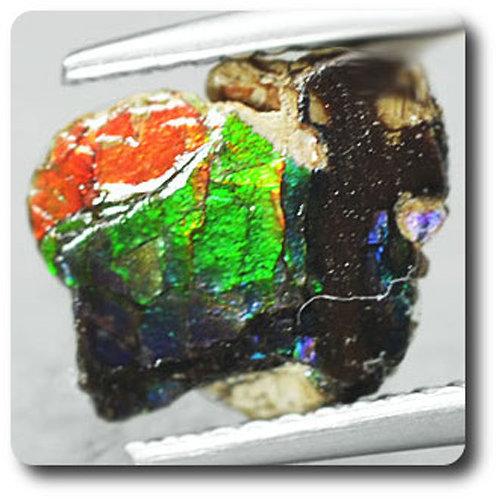 1.29 carats CRISTAL D' AMMOLITE Canada