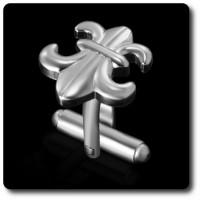 BOUTONS DE MANCHETTES Fleur de Lys