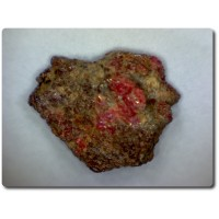 5.6 carats CRISTAL DE PAINITE & RUBIS Birmanie