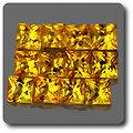 0.10 cts SAPHIR JAUNE . 2,40 MM. IF - VVS1 ( vendu à l'unité ) Ceylan, Sri Lanka