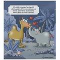 Il Rinomedarioceronte - Il libro (IT)