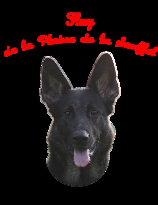Photo sur Épaule Veste ou Blouson