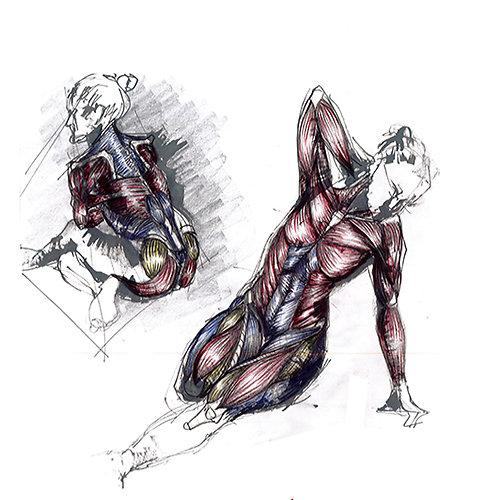 """Stage intensif dessin d'observation : """"Perspective/modèle vivant"""""""