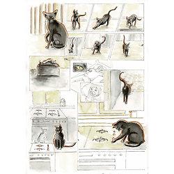 Cours du soir online BD/Illustration
