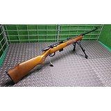 Carabine 22 WMR Marlin 25
