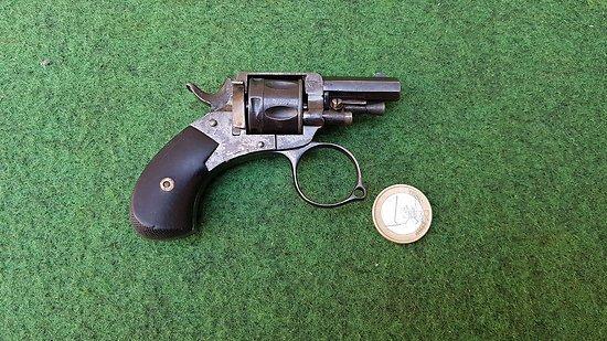 "Revolver bulldog ""revolvelo"" cat d2"