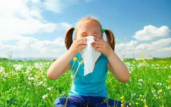Soin des allergies