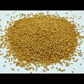 Fenugrec BIO - plante en vrac - herboristerie du Dr. SAMMUT