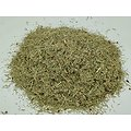 Prêle BIO - plante en vrac - herboristerie du Dr. SAMMUT