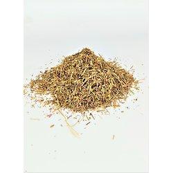 Euphraise BIO - plante en vrac - herboristerie du Dr. SAMMUT