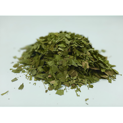 Ginkgo BIO - plante en vrac - herboristerie du Dr. SAMMUT