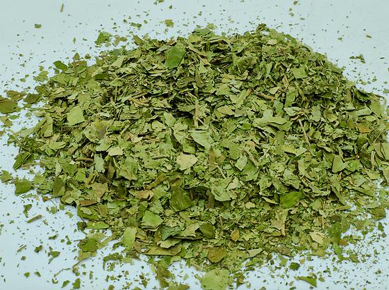 Gymnema BIO - plante en vrac - herboristerie du Dr. SAMMUT