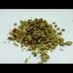 Houblon BIO - plante en vrac - herboristerie du Dr. SAMMUT