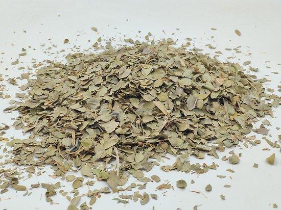 Jujubier BIO - plante en vrac - herboristerie du Dr. SAMMUT