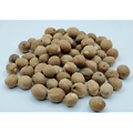 Muscade BIO - plante en vrac - herboristerie du Dr. SAMMUT