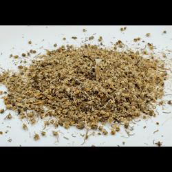 Pâquerette BIO - plante en vrac - herboristerie du Dr. SAMMUT