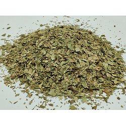 Pervenche BIO - plante en vrac - herboristerie du Dr. SAMMUT