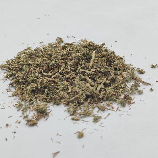 Lycopode BIO - plante en vrac - herboristerie du Dr. SAMMUT