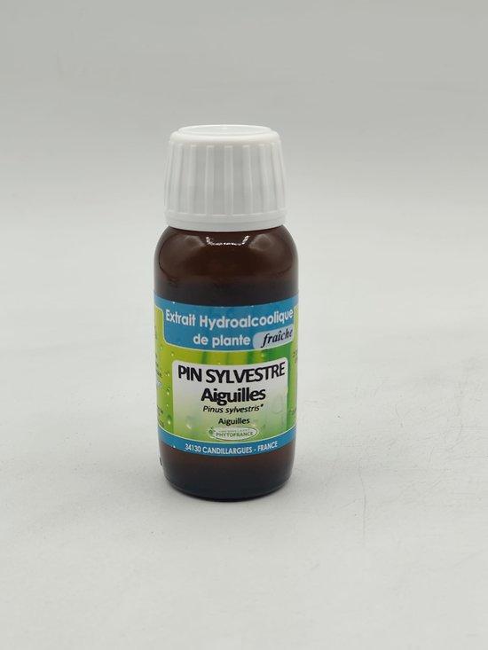 Teinture Mère Pin Sylvestre Aiguille BIO - 60ML - PHYTOFRANCE