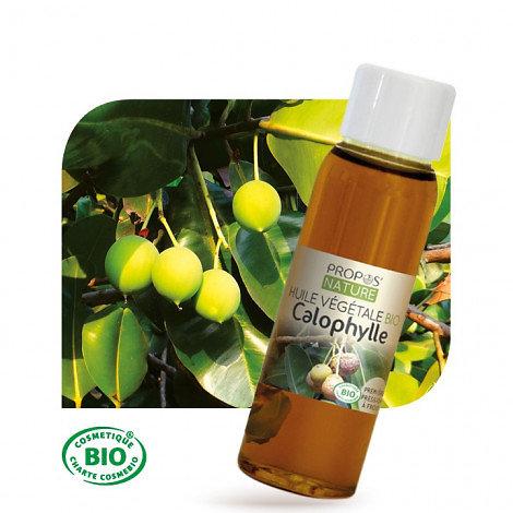 Calophylle (Tamanu) BIO - Huile végétale vierge (100ml)