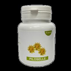 Gélules piloselle - herboristerie du Dr. SAMMUT - 90 gélules