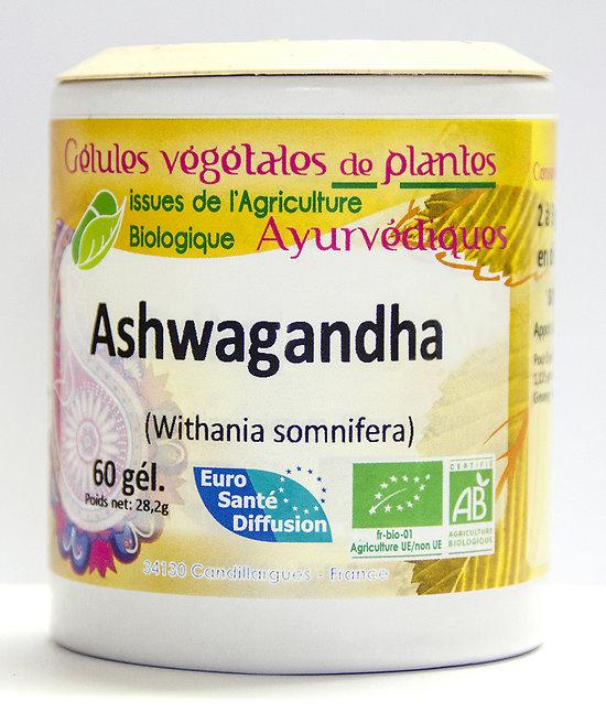 Ashwagandha / Ginseng indien - 60 gélules