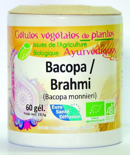 Brahmi / Bacopa - 60 gélules
