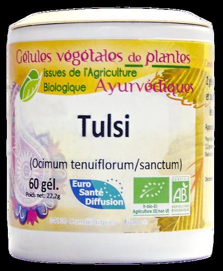 Tulsi / Basilic sacré - 60 gélules