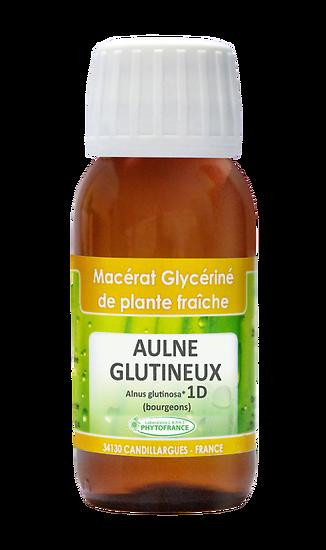 Bourgeon d'aulne glutineux - 60ml