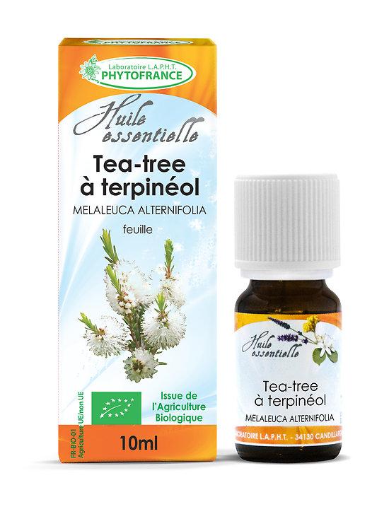 Tea tree ou arbre à thé BIO - Huile Essentielle - Phytofrance - 10ml