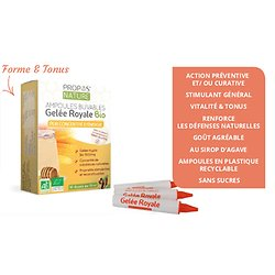 Gelée royale BIO - 1500mg - 10 ampoules de 10ml
