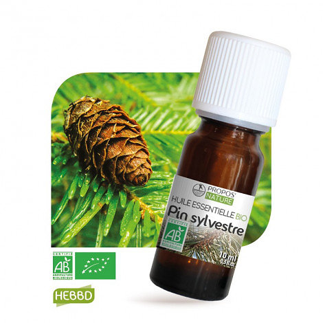 Pin sylvestre BIO - Huile Essentielle - Propos nature - 10ml