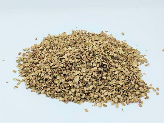 Angélique officinale BIO - plante en vrac - herboristerie du Dr. SAMMUT