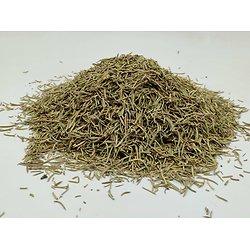 Romarin BIO - plante en vrac - herboristerie du Dr. SAMMUT