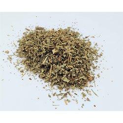 Alchemille BIO - plante en vrac - herboristerie du Dr. SAMMUT