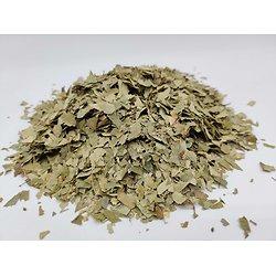 Bouleau BIO - plante en vrac - herboristerie du Dr. SAMMUT