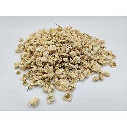 Camomille romaine ou Camomille officinale BIO - plante en vrac - herboristerie du Dr. SAMMUT