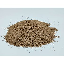 Carvi graines BIO - plante en vrac - herboristerie du Dr. SAMMUT