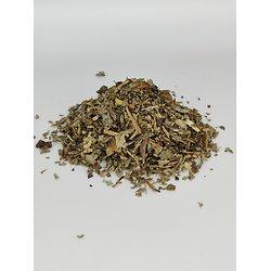 Chêne BIO - plante en vrac - herboristerie du Dr. SAMMUT