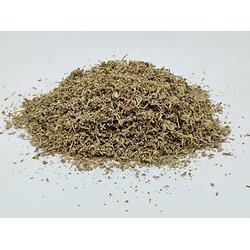 Damiana - plante en vrac - herboristerie du Dr. SAMMUT