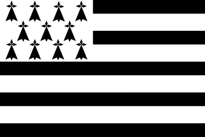 Drapeau BRETON/celtique 60cmsur 90cm/Bretagne/Armor/Celte/HERMINES
