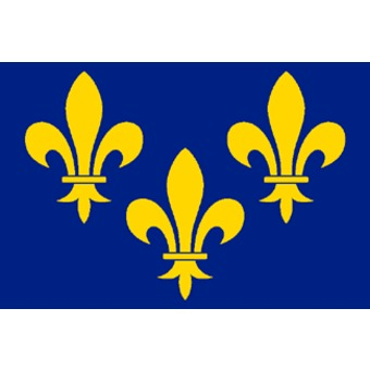 DRAPEAU ILE DE FRANCE/150X90CM/FLEURS DE LYS